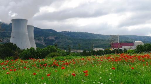 Galería multimedia: foto de la central desde campo con amapolas