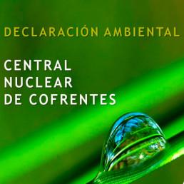 Medioambiente Subhome, Declaracion Ambiental Anual