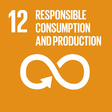 About Us: SDG 12