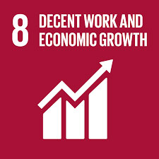 About Us: SDG 8