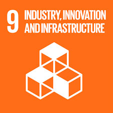 About Us: SDG 9